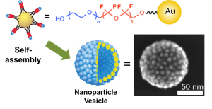 (1)Fluorinated PEG modification for the self-assembly of nanoparticles in solvents.